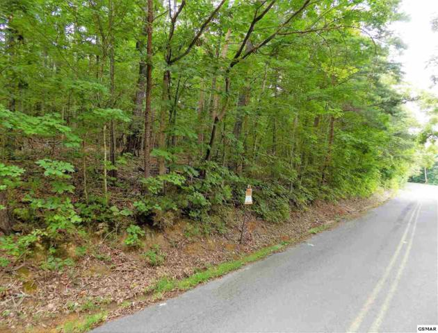 Lots 9-10 Redwood Dr, White Pine, TN 37890 (#217465) :: The Terrell Team