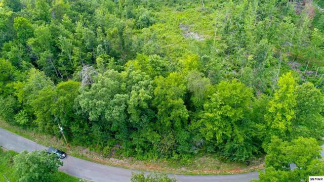 LOT 2 Tomahawk Dr, Cosby, TN 37722 (#217467) :: The Terrell Team