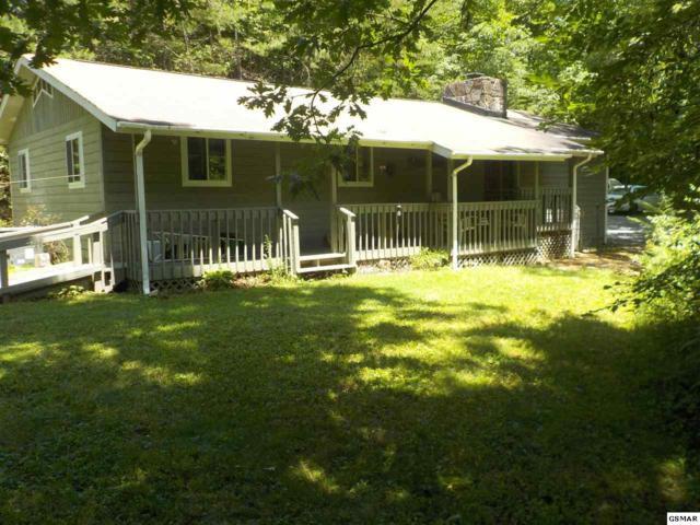 429 Shields View Dr., Gatlinburg, TN 37738 (#217471) :: SMOKY's Real Estate LLC