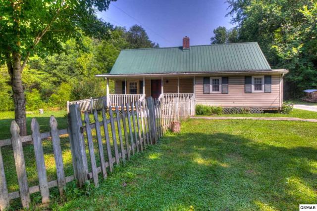 1148 Pine Hollow Way, Sevierville, TN 37876 (#217474) :: The Terrell Team