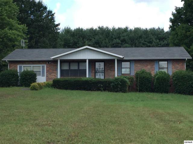 1737 Brookview Dr, Dandridge, TN 37725 (#217479) :: SMOKY's Real Estate LLC