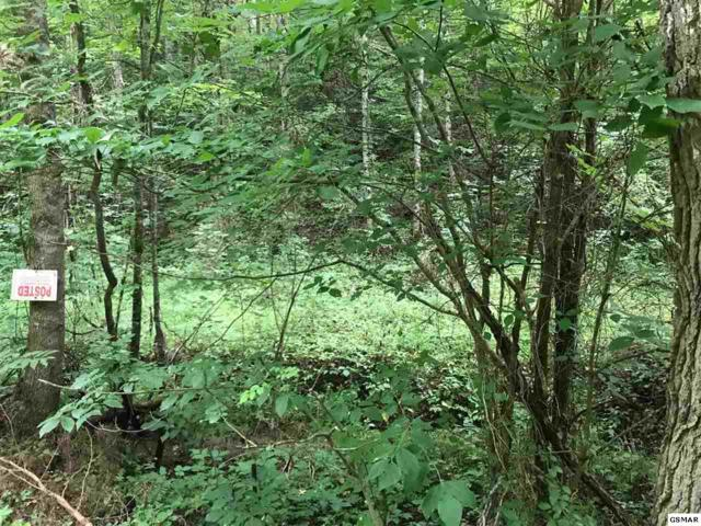 Lot 12 Cody View Way, Sevierville, TN 37876 (#217481) :: Colonial Real Estate