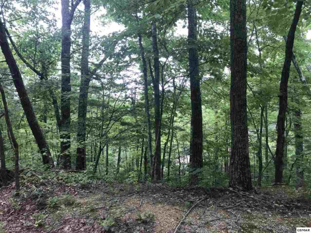 Lot 12 Black Oak, Sevierville, TN 37876 (#217492) :: Billy Houston Group