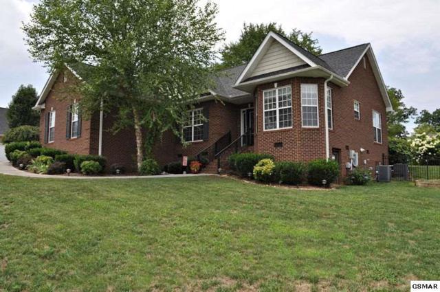 1454 Benjamin Blvd, Sevierville, TN 37876 (#217502) :: SMOKY's Real Estate LLC