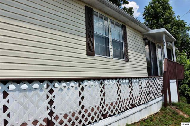424 Mountain Thrush Drive, Townsend, TN 37882 (#217506) :: SMOKY's Real Estate LLC