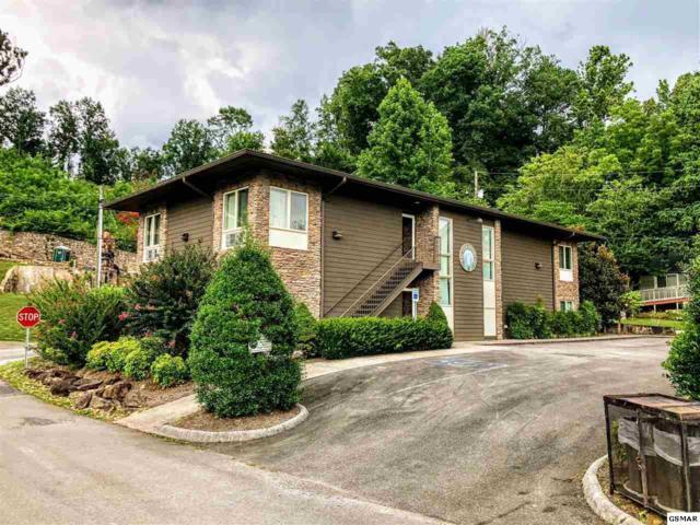 425 Stuart Lane Downtown Gatlin, Gatlinburg, TN 37738 (#217514) :: Colonial Real Estate