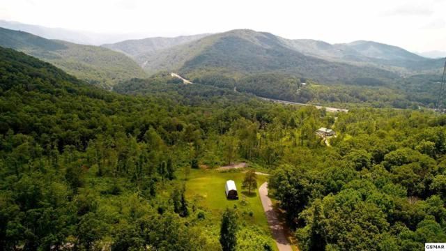 LOT 5 Tomahawk Drive, Cosby, TN 37722 (#217525) :: Billy Houston Group