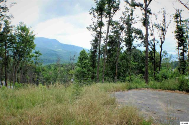 915 Deer Path Ln, Gatlinburg, TN 37738 (#217541) :: Colonial Real Estate