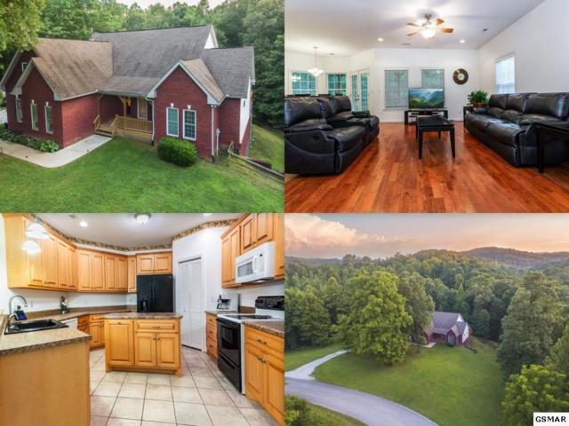 376 Old Holderford Road, Kingston, TN 37763 (#217542) :: Billy Houston Group