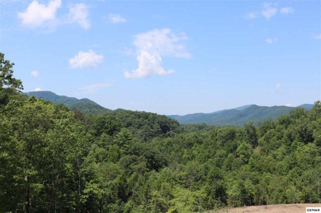Lot 38 Coopers Hawk Way, Sevierville, TN 37862 (#217555) :: Billy Houston Group