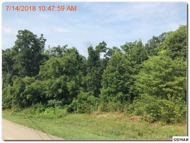lot 41,42 Deer Ridge Dr., Rutledge, TN 37861 (#217570) :: Billy Houston Group