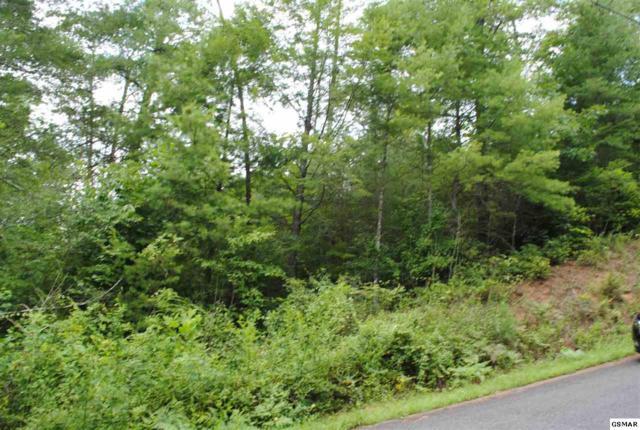 lot 4 Mountain Rest Way, Sevierville, TN 37876 (#217575) :: Billy Houston Group