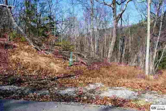 LOT 6E Stackstone Rd, Sevierville, TN 37862 (#217606) :: Billy Houston Group
