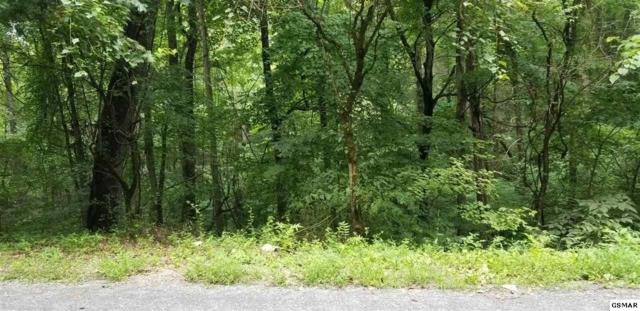 Lot 16 Bueno Vista Dr, Cosby, TN 37722 (#217616) :: Billy Houston Group