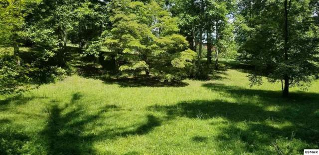 LOT 2 Mcclure Lane, Sevierville, TN 37862 (#217617) :: Billy Houston Group