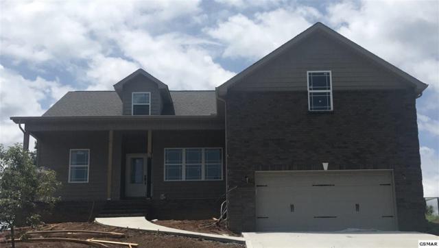 827 Springtime Trail, Seymour, TN 37865 (#217653) :: Colonial Real Estate