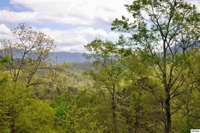 Lot 13 Whetstone Road, Sevierville, TN 37862 (#217656) :: Four Seasons Realty, Inc