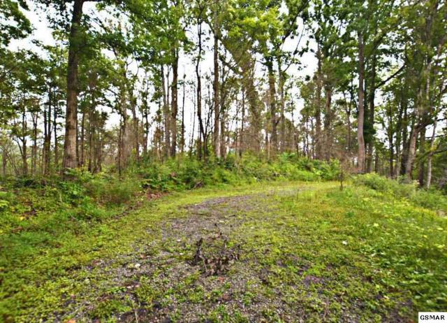 343 Hilltop Road, Gatlinburg, TN 37738 (#217663) :: Billy Houston Group