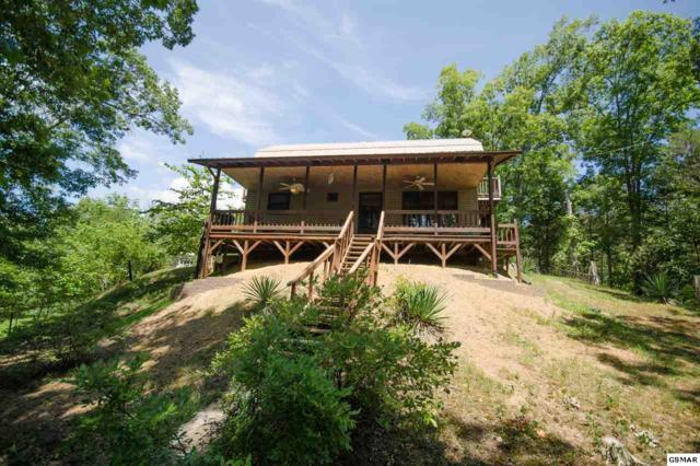 3975 Timber Way, Sevierville, TN 37876 (#217675) :: The Terrell Team