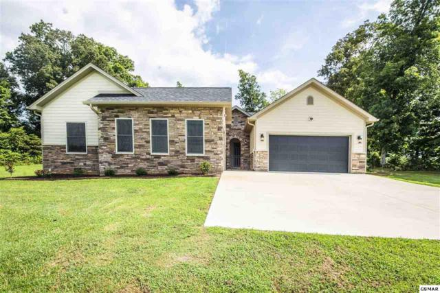 2005 River Mist Cir, New Market, TN 37820 (#217690) :: Billy Houston Group