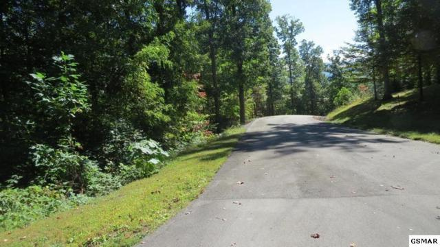 Patriot Lane, Sevierville, TN 37862 (#217703) :: Billy Houston Group