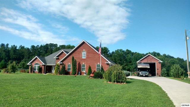 110 County Line Rd, Dandridge, TN 37725 (#217714) :: Colonial Real Estate