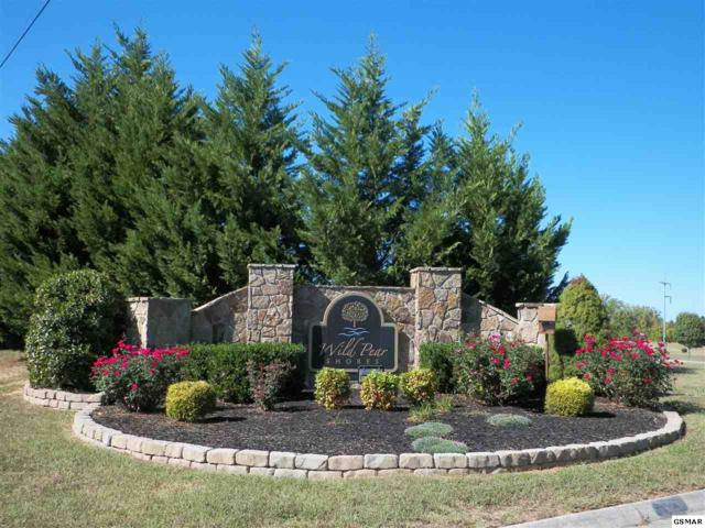 Lot 61 Big Oak Dr, Dandridge, TN  (#217715) :: Four Seasons Realty, Inc