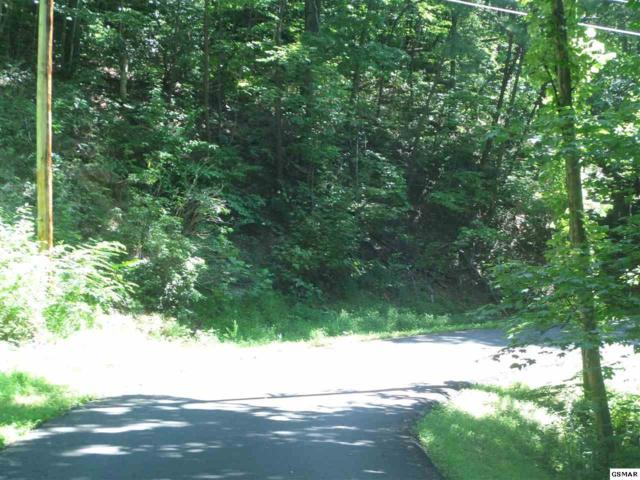 Laddiebuck Ln Lot 7, Sevierville, TN 37862 (#217718) :: Billy Houston Group