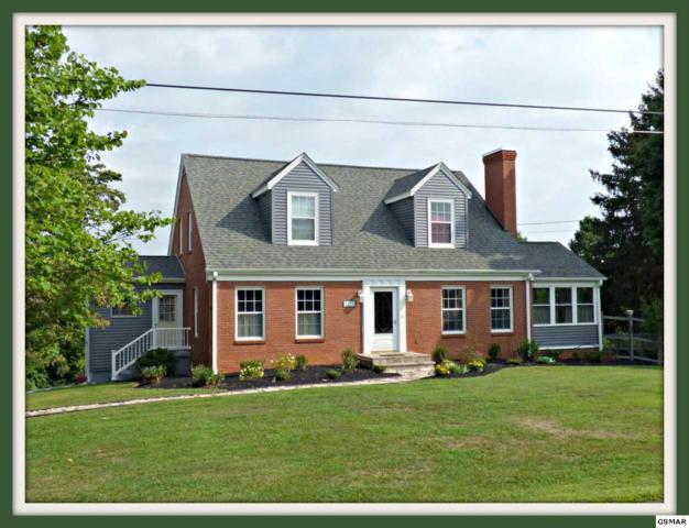 1271 Lakeview Dr, Dandridge, TN 37725 (#217730) :: Billy Houston Group