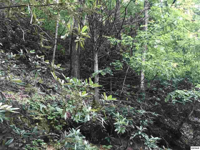 Lot 2 Butler  Branch, Gatlinburg, TN 37738 (#217735) :: Billy Houston Group