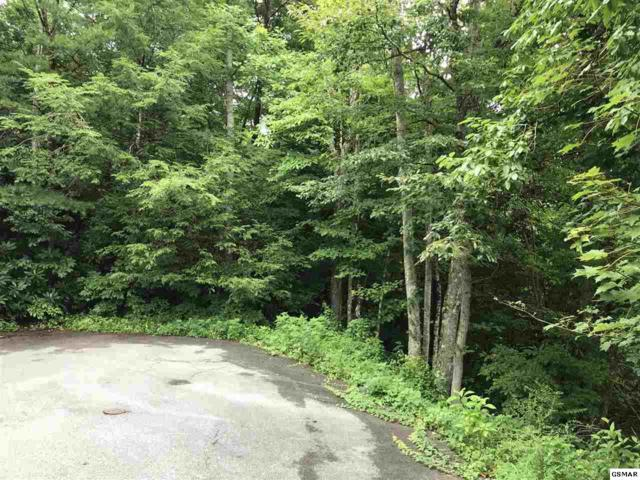 Lot 52 Butler Branch, Gatlinburg, TN 37738 (#217736) :: Billy Houston Group