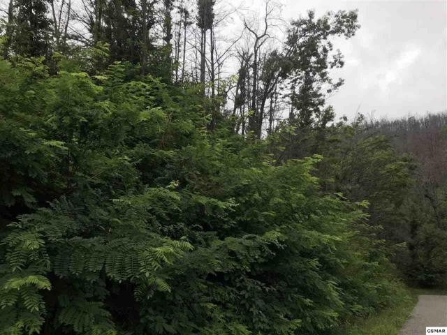 Lot 71 Pine Top Lane, Gatlinburg, TN 37738 (#217737) :: Billy Houston Group