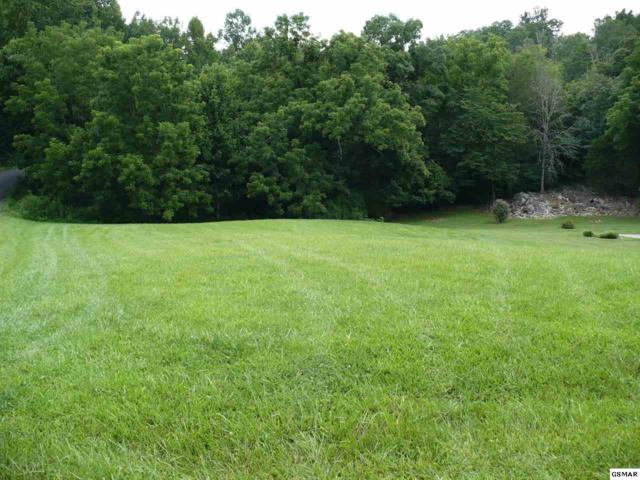 Lot #PT-11 Valley Home Road, Sevierville, TN 37862 (#217741) :: Colonial Real Estate