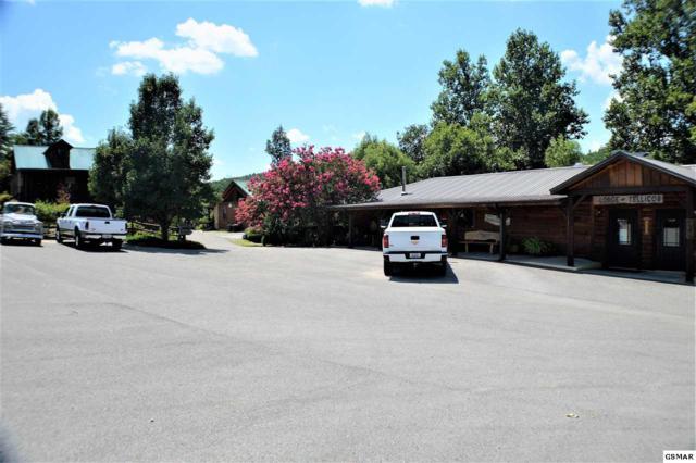 9436 New Highway 68, Tellico Plains, TN 37385 (#217754) :: The Terrell Team