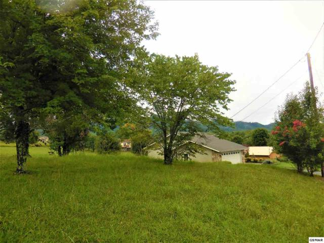 2144 Red Bank Circle, Sevierville, TN 37876 (#217777) :: Billy Houston Group