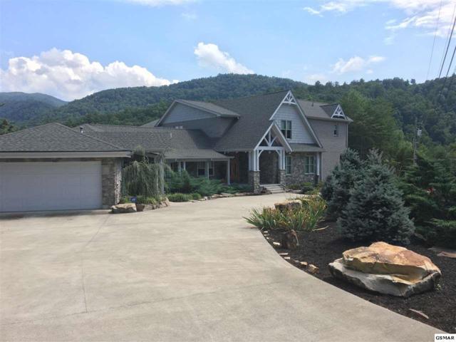 163 Kelly Ridge Road, Townsend, TN 37882 (#217784) :: Four Seasons Realty, Inc