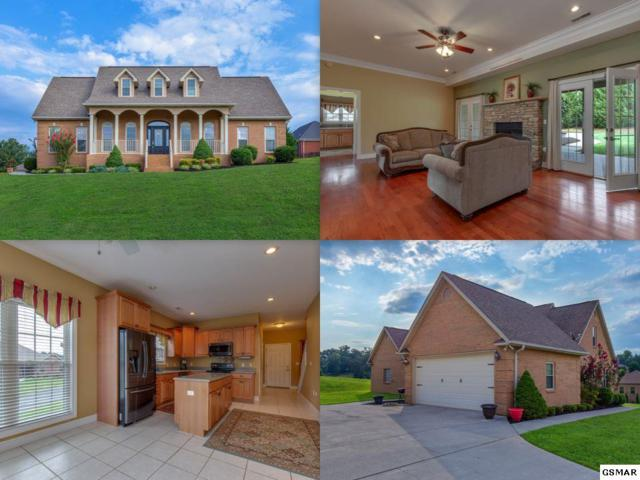 1804 Placid Drive, Sevierville, TN 37862 (#217792) :: Colonial Real Estate