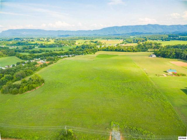 Tract 4 Sevierville Road, Maryville, TN 37804 (#217796) :: Billy Houston Group