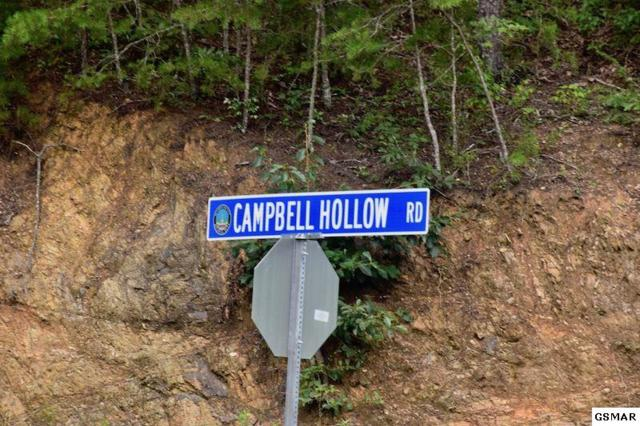 1420 Campbell Hollow Rd, Sevierville, TN 37876 (#217800) :: Four Seasons Realty, Inc