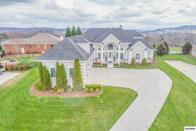 3708 Shipwatch Ln, Knoxville, TN 37920 (#217811) :: Billy Houston Group