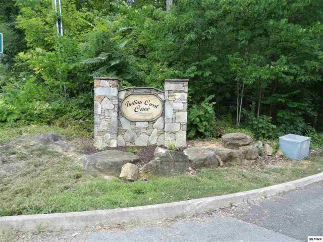 lot 9 Painted Sky Drive, Dandridge, TN 37725 (#217825) :: Billy Houston Group