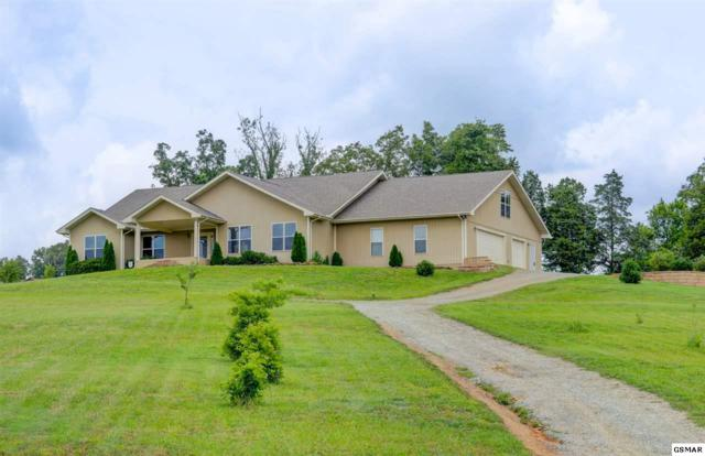 1969 Rays Gap Rd, Sevierville, TN 37876 (#217830) :: Billy Houston Group