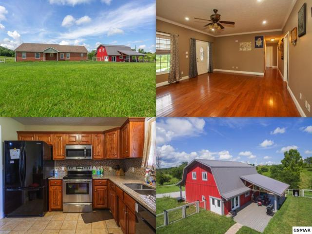 1011 E Dumplin Valley Road, Jefferson City, TN 37760 (#217851) :: Colonial Real Estate