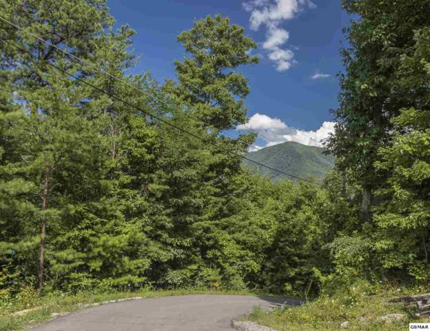 lot 4 Glenview Way, Sevierville, TN 37862 (#217861) :: Colonial Real Estate