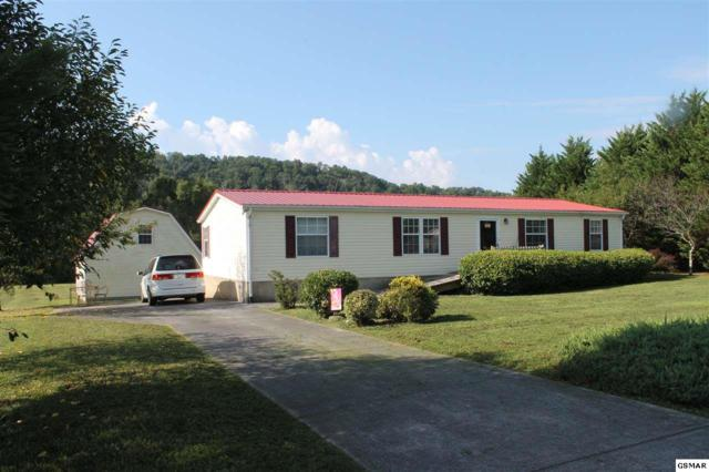 2036 River Meadows Dr, Sevierville, TN 37876 (#217865) :: Billy Houston Group