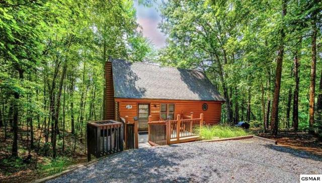 1715 Blue Ridge Road Way To Go, Sevierville, TN 37876 (#217886) :: Colonial Real Estate