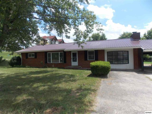 430 Shirley Avenue, Pigeon Forge, TN 37863 (#217892) :: Colonial Real Estate