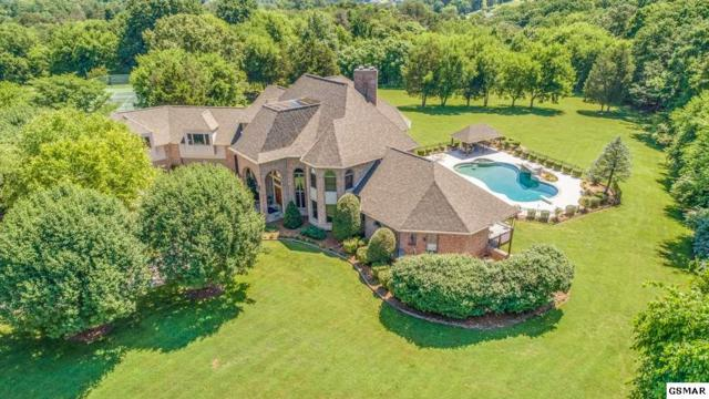 2263 Henge Point Lane, Knoxville, TN 37922 (#217893) :: Colonial Real Estate