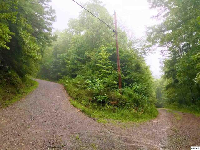 Lot 1 Walnut Flats Road, Walland, TN 37886 (#217905) :: Billy Houston Group