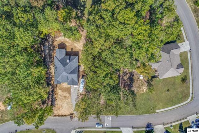 4305 Platinum Drive, Knoxville, TN 37938 (#217916) :: Billy Houston Group